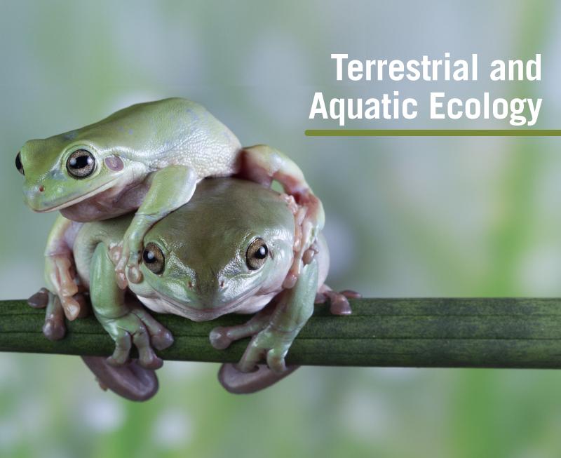 Terrestrial and Aquatic Ecology